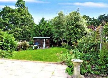 Thumbnail 4 bed property to rent in Park Avenue, West Wickham, Kent
