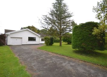 Thumbnail 3 bed bungalow to rent in Llangwm, Haverfordwest