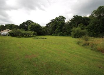 Thumbnail 5 bed equestrian property for sale in Mill Lane, Felbridge, East Grinstead