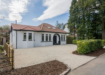 Thumbnail 5 bed detached bungalow for sale in Broomlea, Pacemuir Road, Kilmacolm