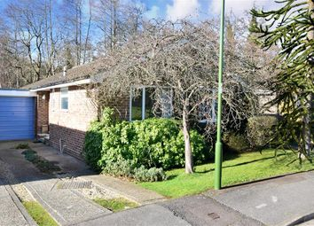 Thumbnail 3 bed bungalow for sale in Pitsham Wood, Midhurst, West Sussex