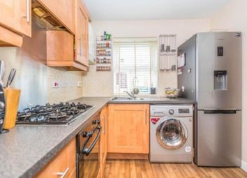 Thumbnail 4 bed semi-detached house to rent in Chestnut Road, London
