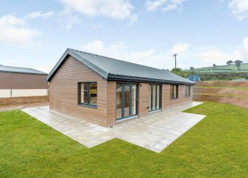 Thumbnail 2 bed bungalow for sale in Chillaton, Lifton