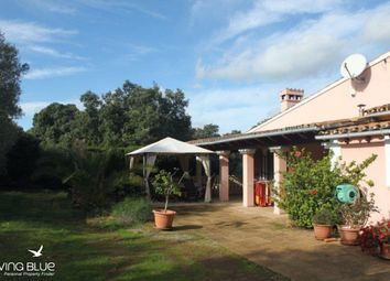 Thumbnail 2 bed country house for sale in Santa Maria Del Cam, Mallorca, Spain