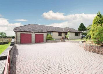 Thumbnail 5 bed bungalow for sale in Vicars Bridge Road, Blairingone