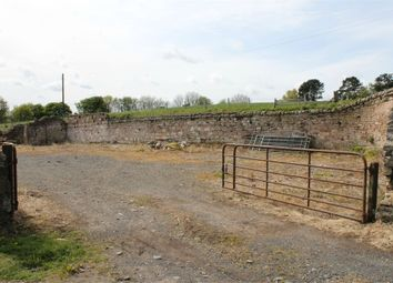 Thumbnail Detached house for sale in Plots 7 And 8, Castle Hills Farm, Castle Hills Lane, Berwick Upon Tweed, Northumberland