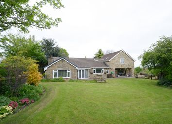 Thumbnail 5 bed detached house for sale in Holmgate Road, Clay Cross, Chesterfield