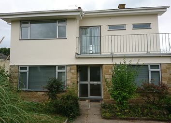 Thumbnail 3 bed detached house to rent in Springfields, Colyford