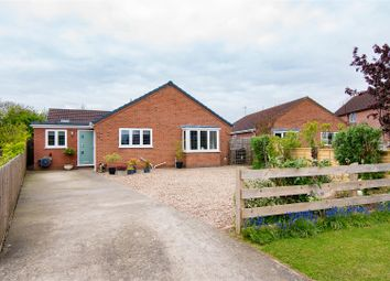 Thumbnail 4 bed bungalow for sale in Steapas Close, Great Steeping, Spilsby