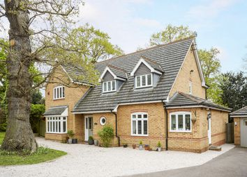 Thumbnail 4 bed detached house to rent in Tower Gardens, Claygate, Esher