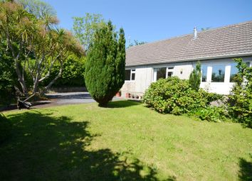 Thumbnail 2 bed detached bungalow for sale in New Hedges, Tenby