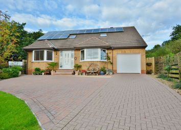 Thumbnail 4 bed detached bungalow for sale in Willow Drive, Whitehaven
