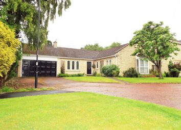 Thumbnail 3 bedroom bungalow for sale in Beech Close, North Gosforth, Newcastle Upon Tyne