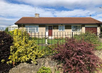 Thumbnail 3 bed detached bungalow to rent in Maltby, Rotherham