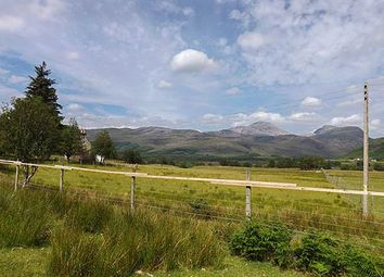 Photo of Plot Arineckaig, Strathcarron, Ross- Shire IV54