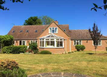 Thumbnail 5 bed property for sale in Mill Lane, Downham Market