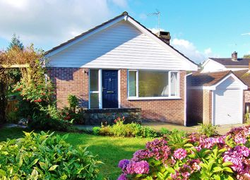 Thumbnail 4 bed detached bungalow to rent in Hendra Vale, Launceston