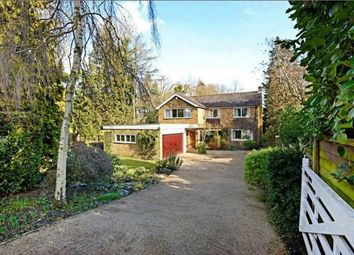 Thumbnail 4 bed detached house to rent in Newlands Avenue, Radlett, Hertfordshire