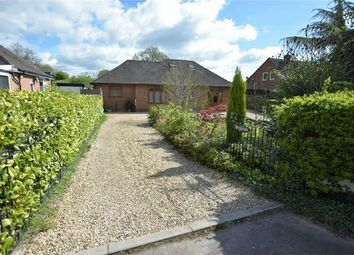 Thumbnail 4 bed detached house for sale in Whittaker Lane, Little Eaton, Derby