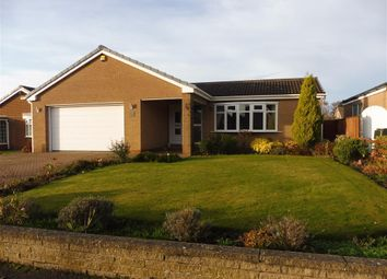 Thumbnail 4 bed bungalow to rent in Boston Drive, Marton-In-Cleveland, Middlesbrough