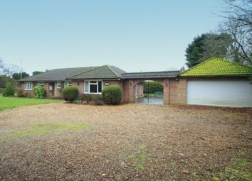 Thumbnail 3 bed detached bungalow to rent in Upper Moors Road, Brambridge, Eastleigh