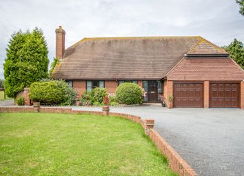 Thumbnail 4 bed bungalow for sale in Pond Farm Road, Borden, Sittingbourne