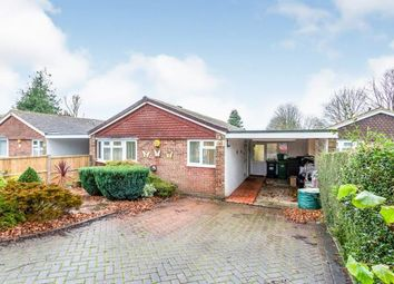 3 bed bungalow for sale in Kempshott, Basingstoke, Hampshire RG22
