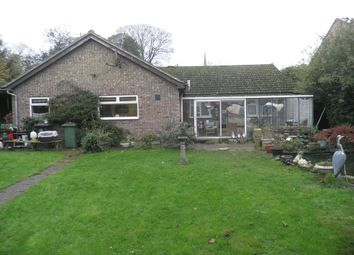 Thumbnail 3 bed detached bungalow for sale in East Road, Oundle, Peterborough