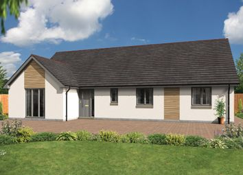 Thumbnail 4 bedroom bungalow for sale in 34 Carron Street, Nairn
