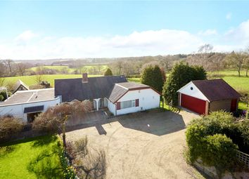 Thumbnail 4 bed detached bungalow for sale in Best Beech Hill, Wadhurst, East Sussex