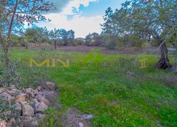 Thumbnail Land for sale in Peral Area, São Brás De Alportel (Parish), São Brás De Alportel, East Algarve, Portugal