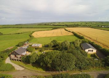 Thumbnail 4 bed property for sale in Bridgerule, Nr Bude, Devon