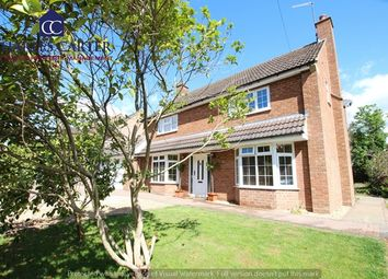 Thumbnail 4 bed detached house to rent in Malvern Road, Powick, Worcester