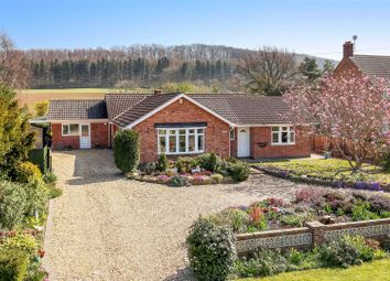 Thumbnail 5 bed detached bungalow for sale in Sedgebrook Road, Woolsthorpe, Grantham