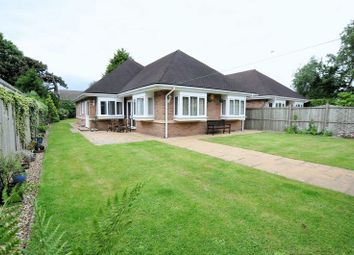Thumbnail 3 bed detached bungalow for sale in The Limes, Ashby Road, Burton On Trent