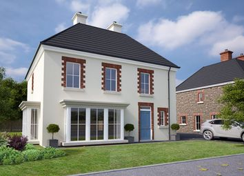 Thumbnail 4 bed detached house for sale in Sloanehill, Comber Road, Killyleagh