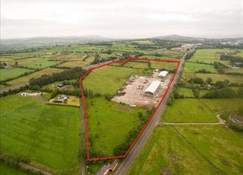 Thumbnail Warehouse to let in Ballycraigy Business Park, 655 Antrim Road, Mallusk, County Antrim