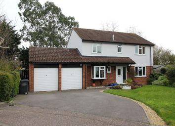 Thumbnail 4 bed detached house for sale in Quilp Drive, Chelmsford, Essex