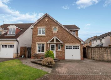 Thumbnail 4 bed detached house for sale in Blackthorn Grove, Menstrie