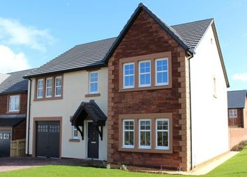 Thumbnail 4 bedroom detached house for sale in Plot 23 Routledge, Chapelfield, Linden Park, Temple Sowerby, Penrith