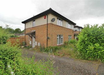 Thumbnail Semi-detached house to rent in Wimbledon Place, Bradwell Common, Milton Keynes