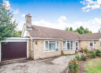 Thumbnail 3 bed detached bungalow for sale in Silver Lea, Kilmington, Axminster