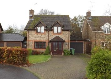 Thumbnail 4 bed detached house to rent in Haybarn Drive, Horsham