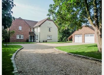 Thumbnail 4 bed detached house for sale in Back Lane, Holywell, St. Ives