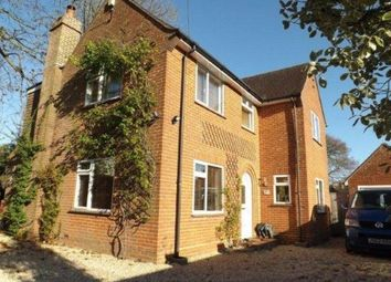 Thumbnail 3 bed detached house for sale in Thatched Cottage Park, Southampton Road, Lyndhurst