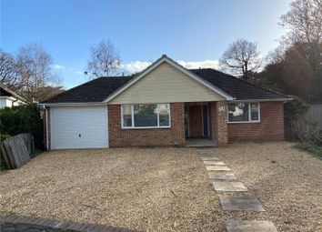 3 bed bungalow for sale in Shorefield Way, Milford On Sea, Lymington, Hampshire SO41