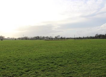 Thumbnail Property for sale in Drewstown, Kells, Co. Meath