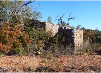 Thumbnail 1 bed farmhouse for sale in Cf 352, Alcarias, Portugal