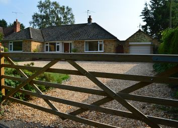 Thumbnail 3 bed bungalow to rent in Petersfield Road, Ropley, Alresford, Hampshire