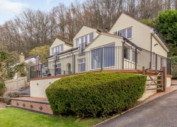 Cherry Tree Lane, Walford, Ross-On-Wye HR9. 3 bed detached house for sale